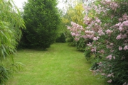 Tweede tuin