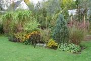 De zomerborder in de herfst met rudbeckia en solidago