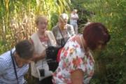 Enorme drukte in de tuin tijdens de open tuinen dag 16 september