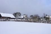 Een strakke sneeuwvlakte richting de Carol Klein tuin